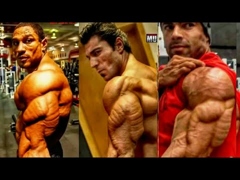 صور صور عضلات البطن , اروع الصور الموضحة لبطن الانسان