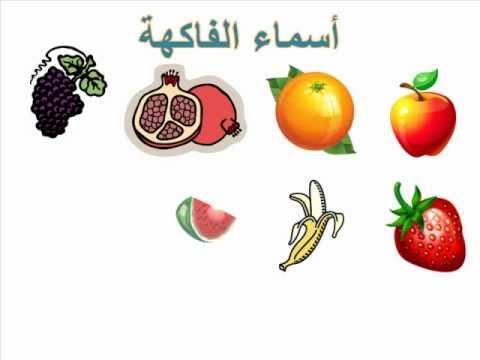 اسماء الفواكه فاكهة بحرف الدال 13