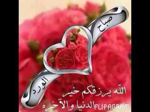 بالصور صور صباحيه للحبيب , اروع واجمل العبارات والكلام فى الصباح 2223 8
