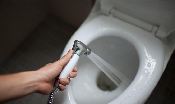 صور شطاف الحمام in english , افضل انواع الشطاف