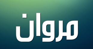 بالصور معنى اسم مروان , اجمل اسماء الذكور 2196 1 310x165