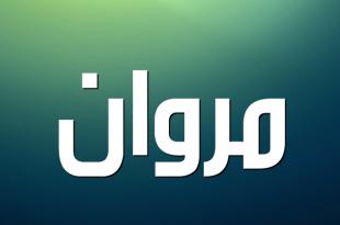 بالصور معنى اسم مروان , اجمل اسماء الذكور 2196 1 310x205