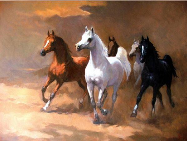 بالصور خيول عربية اصيلة , اناقة الخيول العربيه 2220 3