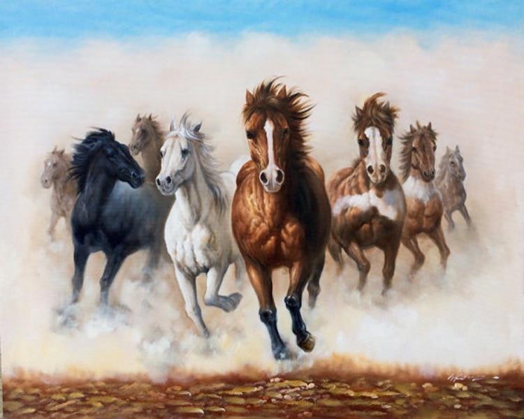 بالصور خيول عربية اصيلة , اناقة الخيول العربيه 2220 4