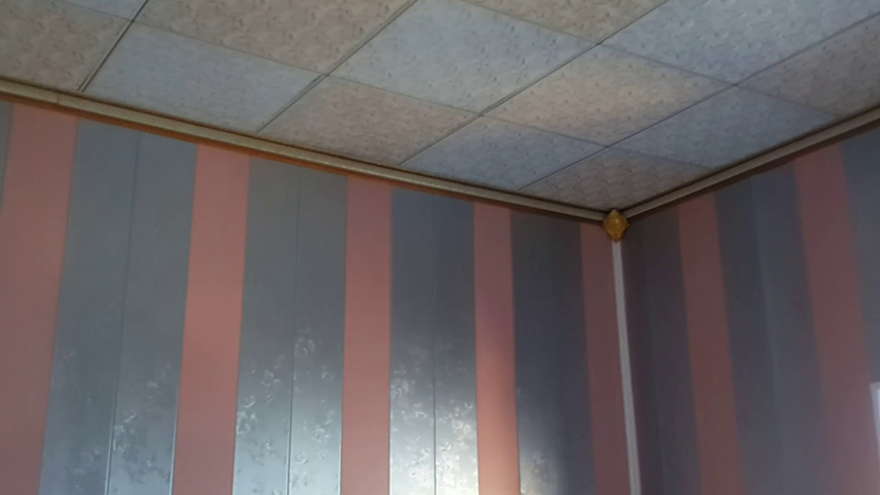 صورة تغليف جدران 6514 6